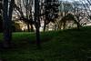 DSC_7362-2 (arnauddjf) Tags: paris arbre parc butteschaumont matin chaumont buttes 19éme