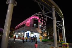 DSC_3135 (ppeng@yahoo) Tags: night nikon taipei 台北 2470 d810 taipeichildrensamusementpark 兒童新樂園 台北兒童新樂園