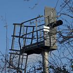 Railway signal in Caerleon
