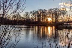 Bellevue State Park (abysal_guardian) Tags: canon eos unitedstates l delaware wilmington ef f4 bellevuestatepark 24105mm ef24105mmf4lisusm 7dmarkii 7dm2