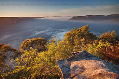 Good Morning From Sublime Point || LEURA || BLUE MOUNTAINS (rhyspope) Tags: new morning blue sky mist plant mountains tree nature weather fog wales point rocks view natural south australia lookout falls wentworth vista aussie sublime solitary jamison katoomba leura