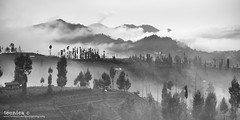 Eternity (t3cnica) Tags: travel blackandwhite bw mist mountain nature fog clouds indonesia volcano landscapes farm farmland homestay bromo mountbromo travelphotography mountsemeru ngadas