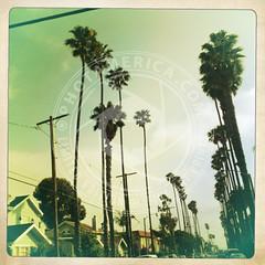 CALIFORNIA-257