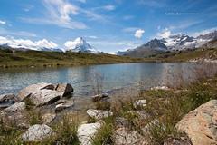 Zermatt (canax) Tags: alps switzerland suisse swiss zermatt matterhorn vallais cervino