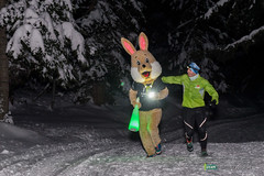 16-Ut4M-BenoitAudige-0595.jpg (Ut4M) Tags: france alpes animaux nuit lapin chamrousse belledonne isre stylephoto benevoles ut4m ut4m2016reco