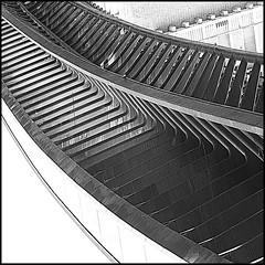 Venezia - Ponte Calatrava (ninin 50) Tags: trip bn venezia ninin pontecalatrava