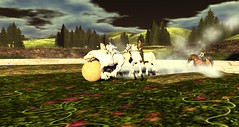 Avilion Nexus - Rogue ANI (Osiris LeShelle) Tags: life game fun call cta arms medieval secondlife second combat ani horseback nexus roleplay initiative calltoarms avilion