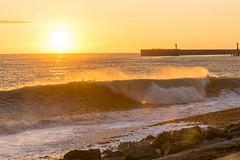 DSC_0205 (sergeysemendyaev) Tags: sunset sea storm beach spring warm waves russia dusk adler atthebeach seashore blacksea seacoast bigwaves sochi  2016                 duringf1 1 duringformulaone