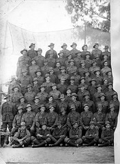 Soldiers of the 43rd Battalion, c1917 (State Library of South Australia) Tags: wwi worldwari worldwarone soldiers aif 43rdbattalion 43rdinfantrybattalion mitchamcamp