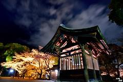 Bad bell.... Lock up !! (Clonedbird  & Iris ) Tags:            sakura japan kyoto kansi sunset         nikon 2016 d810