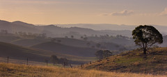 Central West NSW valleys (Richard Sollorz Photography) Tags: autumn mountains west landscape outdoors country central australia valley nsw newsouthwales council shire bathurst ophir cabonne