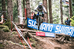 Jump (Andrea Securo) Tags: world terrain mountain cup sports bike danger trek all extreme fast bikes down downhill val dh mtb di sole jumps faster shimano