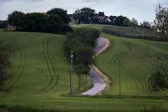 "verdi percorsi paralleli #morrodalba #ostra #lamassa #italy #clod #giornatedifotografia #sensi #enricoprada #canon #nature #road #verde #green (claudio ""clod"" giuliani) Tags: italy canon clod sensi morrodalba giornatedifotografia"