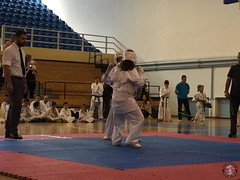 stefanou_15_5_2016_knockdown_247