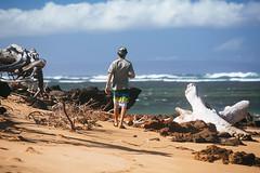 ES8A1404 (repponen) Tags: ocean trip beach garden island hawaii maui shipwreck gods lanai canon5dmarkiii