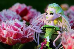 Fringed Tulips  (Mariko&Susie) Tags: park pink sunset flower toy toys spring doll dolls bokeh outdoor vampire limegreen bat tulip susie mariko vamp shallowdepthoffield 50mmlens dollphotography elfears fringedtulip batsy whitebat honduranwhitebat marikosusie monsterhigh canoneos600d canoneosrebelt3i canoneoskissx5 sistersmarikosusie batsyclaro brandboostudents howdoyouboo costashrieka
