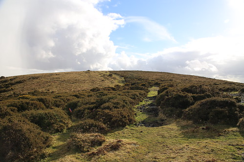 England_2016_02_Dartmoor_005