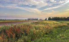 My Close Encounter with a Freight Train (SteveFrazierPhotography.com) Tags: sunset building beautiful clouds train lights evening illinois horizon country tracks engine il wildflowers freight countrhyside