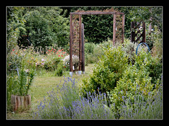 - - - grne Oase - - - (karin_b1966) Tags: flowers trees plants nature garden natur blossoms pflanzen blumen bume garten blten 2016 yourbestoftoday meineruheoase