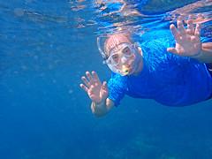 Kauai, 2016 (carrie227) Tags: fish hawaii snorkeling kauai hawaiianislands