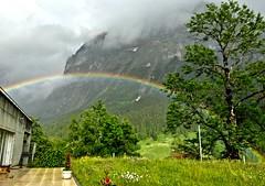 Rainbow clad Swiss countryside (somabiswas) Tags: nature weather landscape schweiz switzerland suisse grindelwald bernese oberland