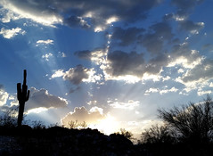 (BCooner) Tags: arizona clouds monsoon sierraestrellamountainsregionalpark