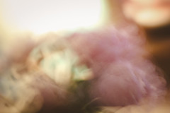 177 - Blur (DanielleDeviated) Tags: longexposure pink flowers abstract blur blurred outoffocus tabletop softcolor intentionalcameramovement 366project