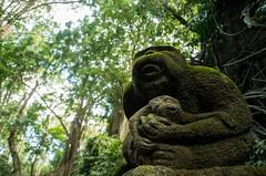 (fabienlej) Tags: bali indonesia temple monkey java ubud kuta singe riceterrace monkeyforest amed indonsie canggu kawahijen balinesepeople kawah munduk sulfurmine idjen riceterracebali rizireterrasse banyuwagi kawahidjen sulferminor