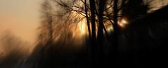(blazedelacroix) Tags: light sunset blur contrast gold nikon sweden