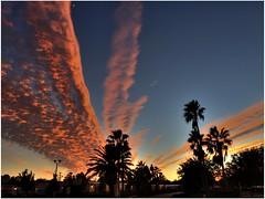 Parrish Sunset (cosmosjon) Tags: sunset sky clouds florida dramatic hdr highdynamicrange cloudporn dramaticskies photomatix jonathansabin topaznoisereduction topazadjustnoisereduction iphone6plus