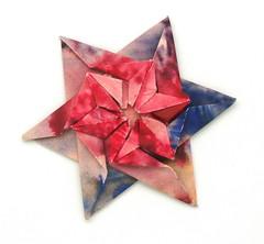 Fujimoto hexagone Rosette  22 front (Pliages et vagabondages) Tags: origami rosette décoration déco fujimoto