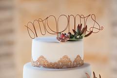 Mr. & Mrs. ([o] suze q) Tags: wedding groom bride texas weddingcake rustic spanish nephew hillcountry elegance weddingphotography wwwserendipitousmomentscom