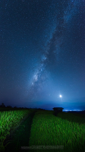 Pa Bong Pieng Village (The rice field) with Milky Way North of Thailand