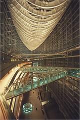 International Centre with flash2 (Eugene Regis) Tags: japan tokyo big sight