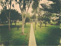 Arrivée à Lima chez Émilie :) vue de l'appartement!