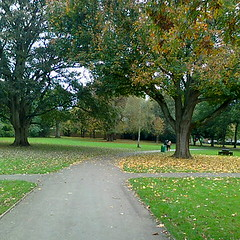 Autumnal Kingsgate Park (southglosguytwo) Tags: trees grass hometown cameraphoneshot 2014 yate southgloucestershire kingsgatepark