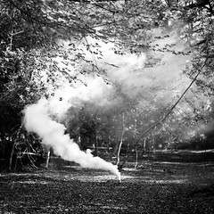 Smoke in the Woods (Hugo Mills) Tags: ocean park new old nyc newyorkcity blue trees light red party people music woman cloud white newyork black paris bird london nature beautiful beauty leaves night clouds contrast photography cool woods nikon war raw forrest cloudy photos head smoke natur thesky cielo dorset grenade maid bournemouth heavenly cloudscape cloudporn blueskys naturelovers skyart lgiht skyporn iloveclouds skylovers skylove cloudsporn photoglobe tagsta instalike instahub skystyles thecloudchasers instasky iskygram instapickskyart skyscapesgf icskies