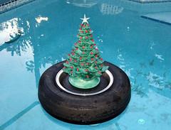 Christmas tree float (clarkfred33) Tags: christmas winter holiday pool dusk spirit tire christmastree christmaslights swimmingpool float pleasure christmasspirit