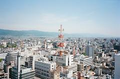 Wakayama city