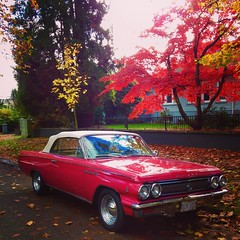 Colour Burst (Pennan_Brae) Tags: pink autumn fall vancouver buick classiccar vintagecar convertible japanesemaple v8 americancar