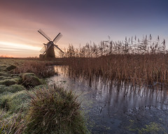 Pastels (jellyfire) Tags: pink winter england orange ice water windmill sunrise reflections reeds landscape dawn countryside suffolk frost general unitedkingdom ze eastanglia carlzeiss herringfleet smockmill suffolkbroads canon5dmkii distagont3518 zeissdistagont18mmf35ze
