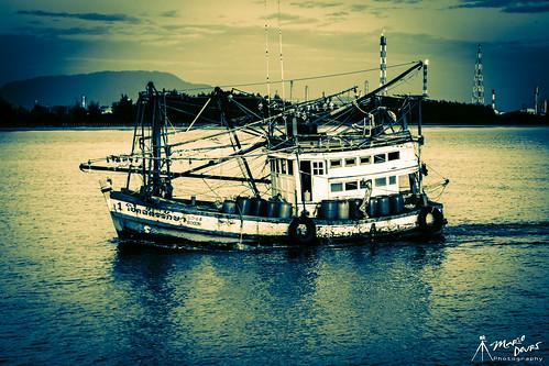 fisherman coming home.