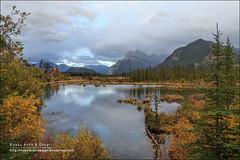 Vermilion Lakes, Banff National Park (Alberta) (Anna & Oskar) Tags: travel viaje canada canon landscape paisaje can alberta banff canadianrockies vermilionlakes 1dx montaasrocosas 5dmarkii