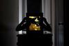 Artist and Her Work (matthewcyee) Tags: original art silhouette artist fuji handmade fujifilm papercut lightbox xt1 fujix