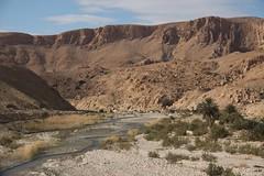 Ouadi (ramosblancor) Tags: naturaleza nature ro river landscape desert tunisia valle paisaje valley desierto tnez metlaoui ouadi