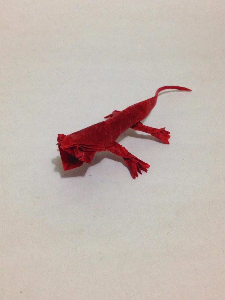the worlds best photos of lizard and origami flickr