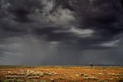 D E S E R T  S T O R M (Hunter's Image Store) Tags: light sunset rain weather squall purple desert geoff outback hunter storms southaustralia centralaustralia lakeeyre birdsville