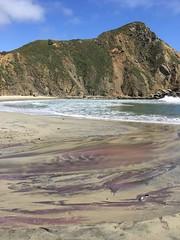 Pfeiffer Beach (tiny red warrior) Tags: california bigsur roadtrip pfeifferbeach purplesand purplebeach