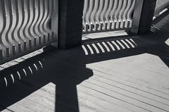 Porch Sunlight (JeffStewartPhotos) Tags: blackandwhite bw sun sunlight toronto ontario canada blackwhite shadows porch toned queenstreet leslieville queenstreeteast walkingwithdavidw