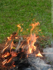 DSCN2498 (moisesbarcellos) Tags: life book power dancing flames books burn firedancing ember fier